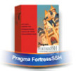 Pragma Systems Fortress