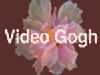 RE:Vision Effects Video Gogh