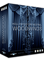 Hollywood Orchestral Woodwinds
