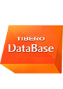 Tibero RDBMS Enterprise Edition